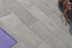 1_essere-free-yoga-gratuito-benessere-per-tutti-village-citta-alassio-estate-lucia-ragazzi-summer-town-wellness-057